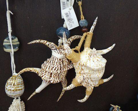 水字貝のオブジェ1.jpg