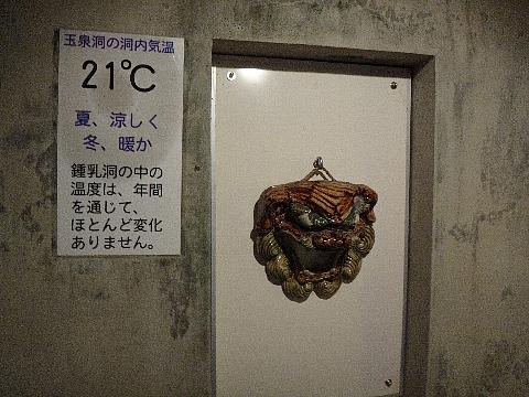 玉泉洞 気温.jpg