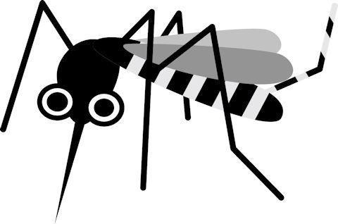 蚊 イラスト.jpg